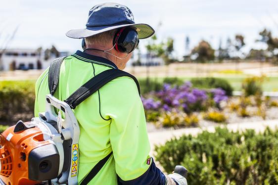 Leaf blower operator with ear muffs