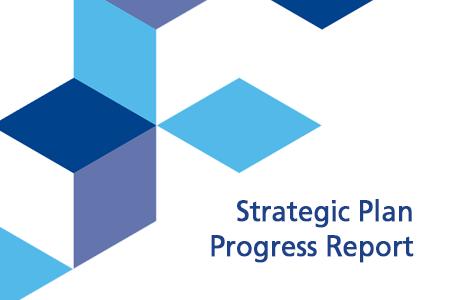 Strategic Plan Progress Report