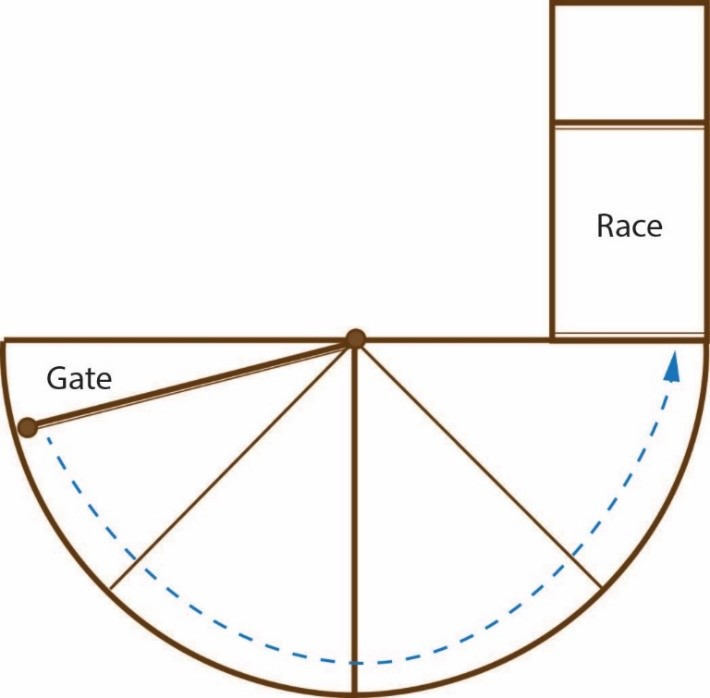 Round forcing pen showing the location of the gates and race